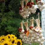Cute Harvest Garlic Decor