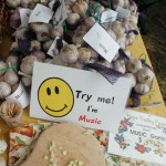 Garlic Samples at Hope Valley Farm Stand