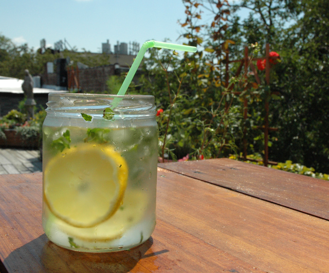 Lemon Mint Drink