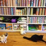 Bushwick Pet Superette