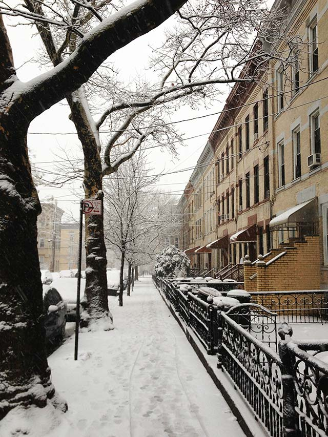 snow-ridgewood-queens