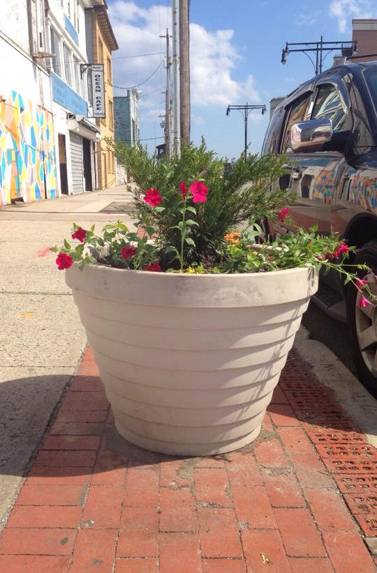 The Beach 116th Street Partnership