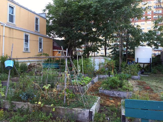 b91-community-garden-2