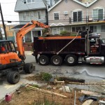 tree-planting-nyc