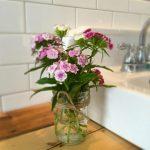 flowers-garden-rockaway
