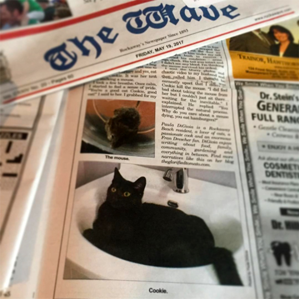 The-Wave-Newspaper