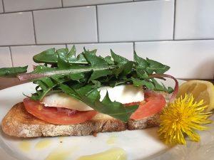 dandelions-sandwich