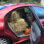 On a recent trip to the Catskills, I had to get some hay and additional pumpkins. It was too good of a bargain to pass up! (1)