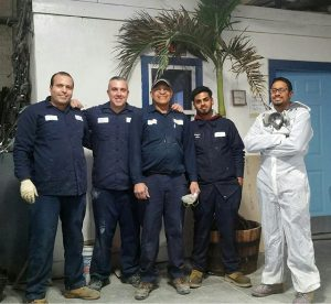 The crew at Bryan's Auto, with the palm tree! (1)