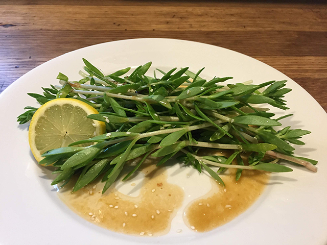 foraged-sedum-sarmentosum-a-spicy-Kerean-dressing