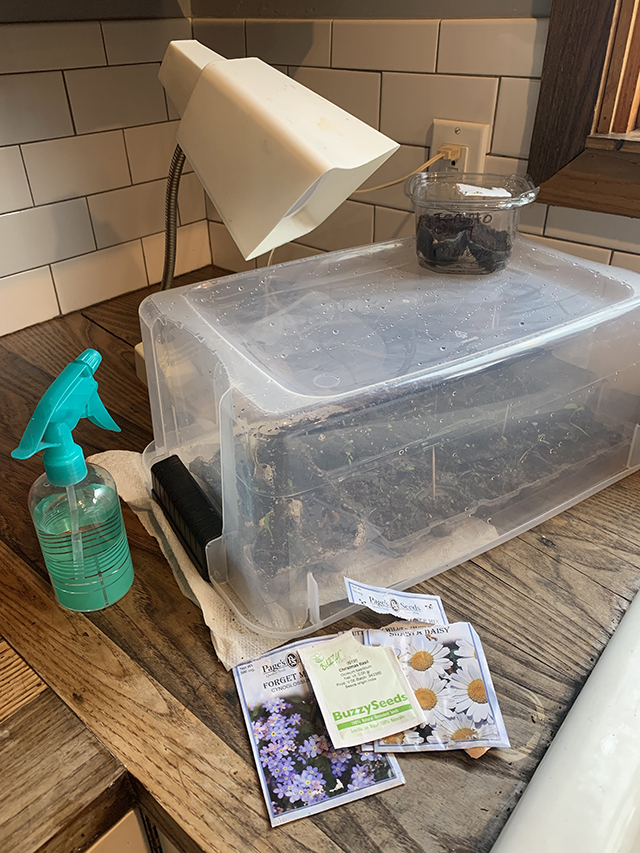 DIY greenhouse set up. You'd be suprised what you can make with things lying around your house!