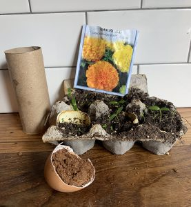 DIY seed containers