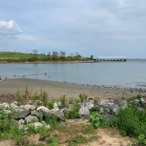 Shirley Chishom Park offers beautiful views of Jamaica Bay